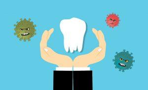 שן לבנה