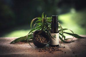 צמח רפואי