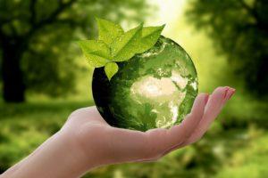 איך חברת סונוביה תורמת לסביבה